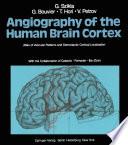 Angiography Of The Human Brain Cortex