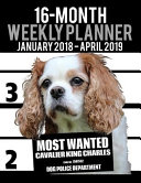 2018 2019 Weekly Planner Most Wanted Cavalier King Charles Spaniel