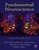 download ebook fundamental neuroscience pdf epub