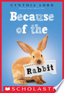 Because of the Rabbit Book PDF