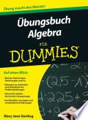 bungsbuch Algebra f  r Dummies