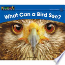 What Can a Bird See