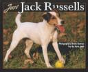 Just Jack Russells