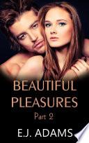 Beautiful Pleasures Book 2