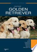 Golden Retriever  Enciclopedia