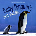 Baby Penguin S First Waddles