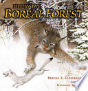 Life in the Boreal Forest