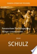 Sklepy Cynamonowe Sanatorium Pod Klepsydrą Pdf/ePub eBook