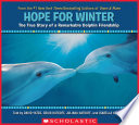Hope for Winter  The True Story of a Remarkable Dolphin Friendship