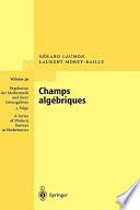 illustration Champs algébriques