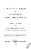 Mammoth Trees of California
