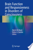 Brain Function and Responsiveness in Disorders of Consciousness