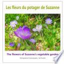 illustration Les fleurs du potager de Suzanne