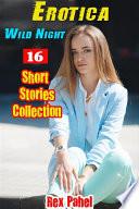 Erotica  Wild Night  16 Short Stories Collection