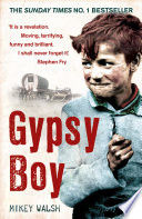 Gypsy Boy by Mikey Walsh