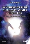 Synth Se D Tude Sur Les Flammes Jumelles