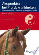 Akupunktur bei Pferdekrankheiten