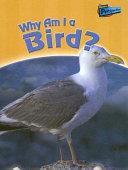 Why Am I A Bird  book