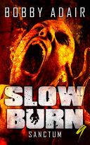 Slow Burn  Sanctum  Book 9