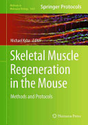 Skeletal Muscle Regeneration in the Mouse