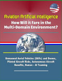 Aviation Artificial Intelligence