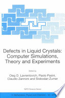 Defects in Liquid Crystals  Computer Simulations  Theory and Experiments