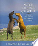 Wild Horses of the West