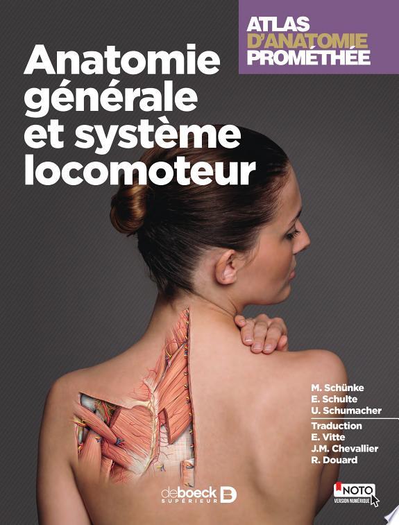 Atlas d'anatomie Prométhée . [1] , Anatomie générale et système locomoteur / M. Schünke, E. Schulte, U. Schumacher ; traduction E. Vitte, J.M. Chevallier, R. Douard.- Louvain-la-Neuve : De Boeck Supérieur , DL 2016