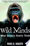 Wild Minds