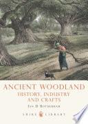Ancient Woodland Beautiful British Woodlands We Might