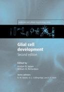 Glial Cell Development