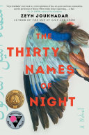The Thirty Names of Night Book