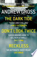 download ebook andrew gross 3-book thriller collection 1: the dark tide, don't look twice, relentless pdf epub