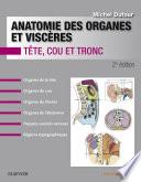 Anatomie des organes et visc  res
