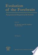 Evolution of the Forebrain