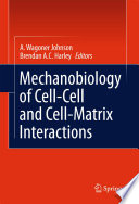 Mechanobiology Of Cell Cell And Cell Matrix Interactions