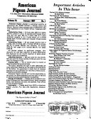 American Pigeon Journal