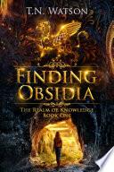 Finding Obsidia Book PDF