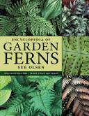 Encyclopedia of Garden Ferns Hundred Ferns For Gardens In A Range Of