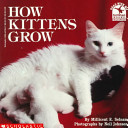 How Kittens Grow