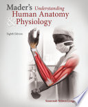 Mader s Understanding Human Anatomy   Physiology