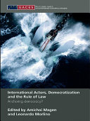 International Actors, Democratization and the Rule of Law
