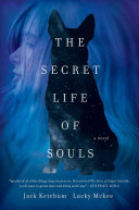 The Secret Life of Souls Book Cover