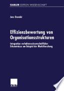 Effizienzbewertung von Organisationsstrukturen