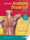 Clemente s Anatomy Dissector