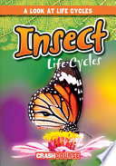 Insect Life Cycles PDF