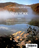 download ebook new york pdf epub