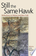 Still the Same Hawk On Nature And New York Brings