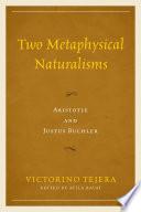 Two Metaphysical Naturalisms
