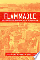 Flammable   Environmental Suffering in an Argentine Shantytown
